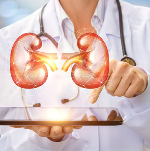 Nephrology Treament In India