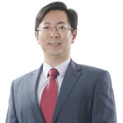 Dato Dr Ho Teik  Kok