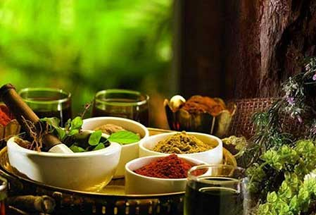 Wellness Treatment In India